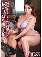 My Wife's Big Sister Suddenly Came Over And Kept On Fucking Me For 2 Days And 1 Night Yumi Kazama Download